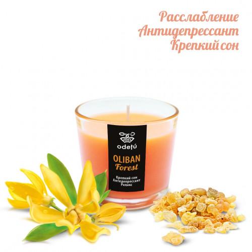 Арома свеча Oliban Forest