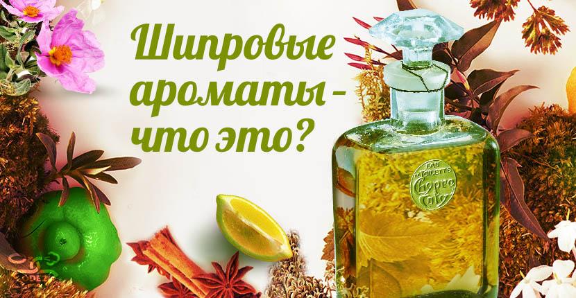 шипровые-ароматы-что-это-читать-одэту