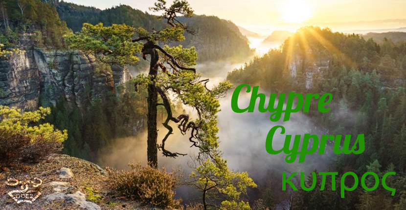 chypre-кипр-шипровые-ароматы-одэту