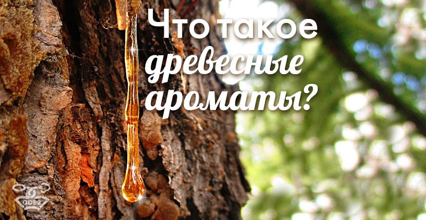 что-такое-древесные-ароматы-компоненты-список-одэту