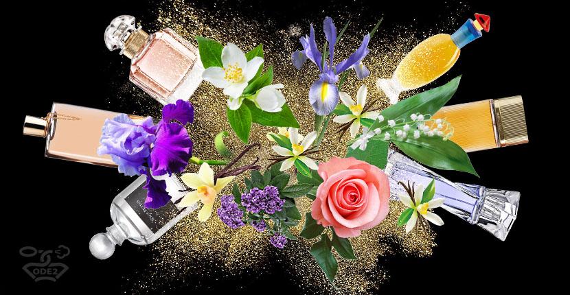 список-пудровых-ароматов-духов-для-женщин