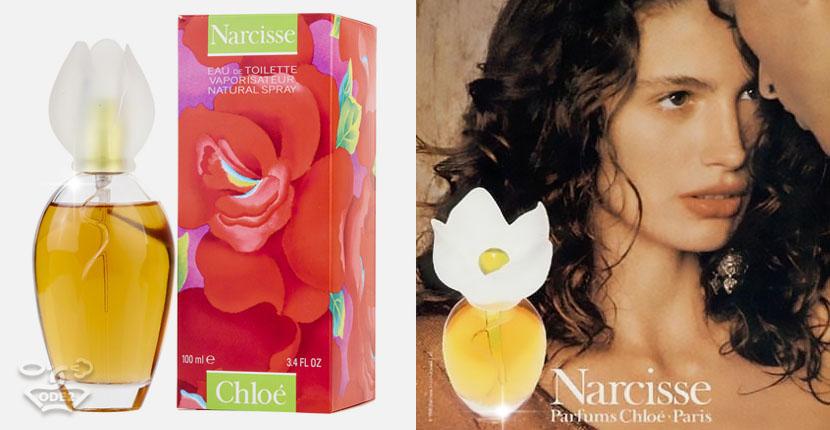 хлое-нарцисс-самые-популярные-духи-для-женщин-одэту