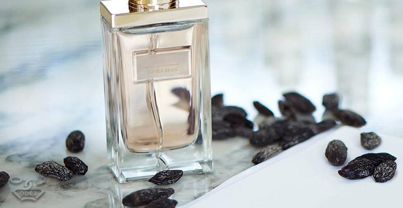 парфюмерия бобы тонка одэту